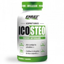 Icosteo - FIRST IRON SYSTEMS