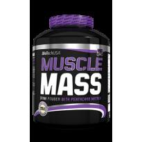 Muscle Mass - BIOTECH USA