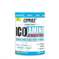 ICO AMINO ENERGY -FIRST IRON SYSTEMS