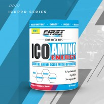 ICO AMINO ENERGY - FIRST IRON SYSTEMS