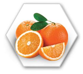 arome_orange.jpg